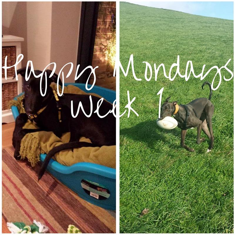 Happy Mondays – #1