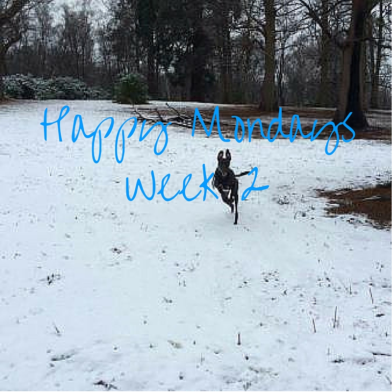 Happy Mondays #2 – Snow and Ice!