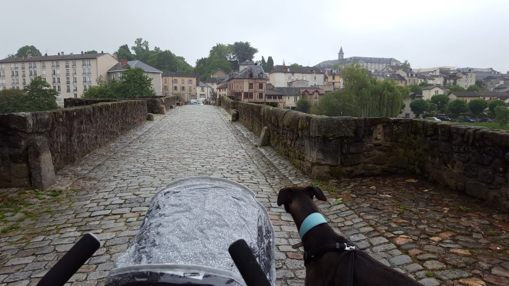 Travelling to France With a Dog