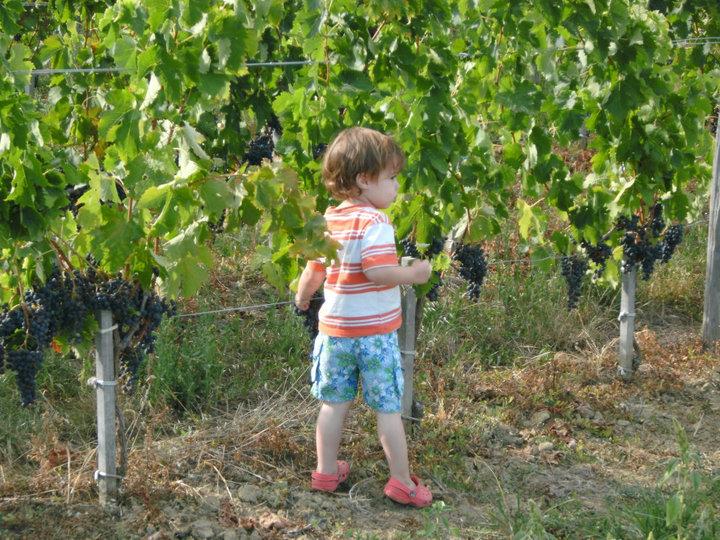Bordeaux with Kids