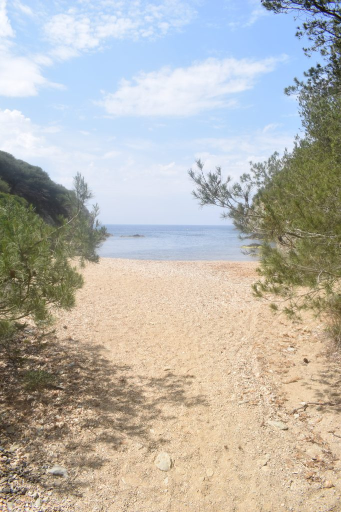 best beaches on Porquerolles